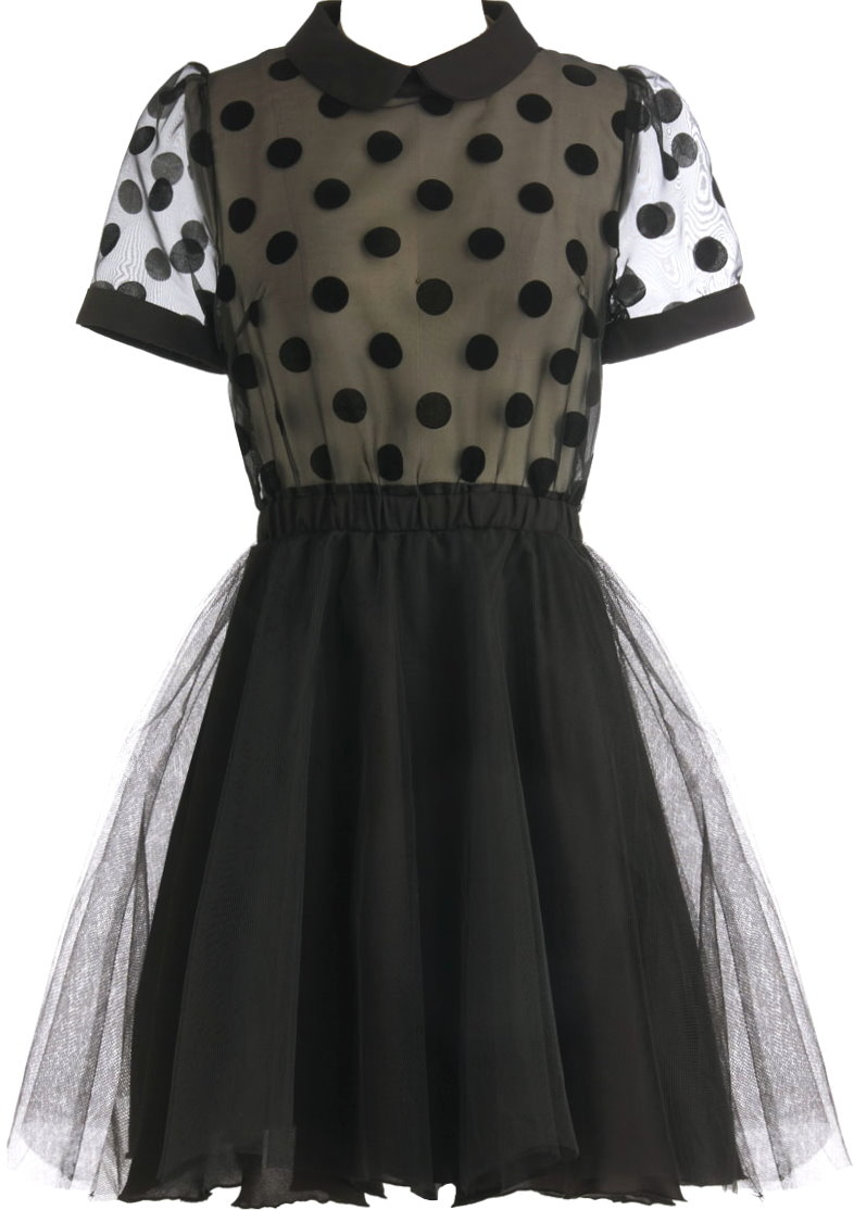 Black Short Sleeve Mesh Polka Dot Skater Dress