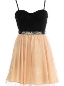 Black Peach Sweetheart Neckline Embellished Waist Mesh Skater Dress