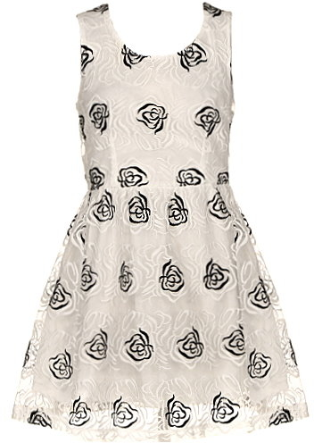 Cream Colored Empire Waist Floral Embroidered Skater Dress
