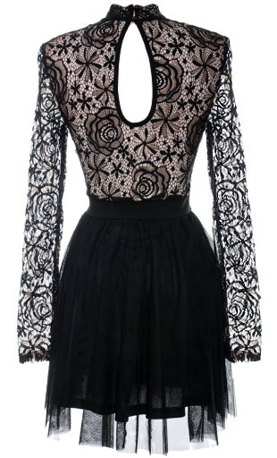 Black Lace High Neck Crochet Long Sleeve Mesh Skater Dress