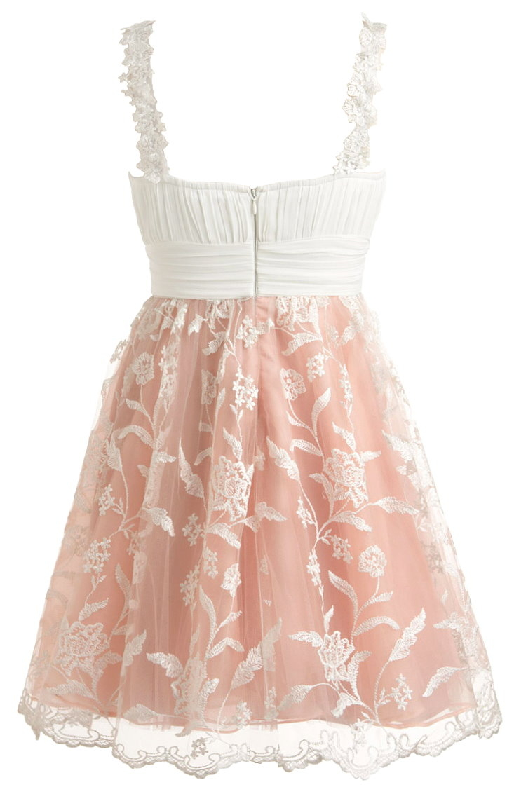 White Embroidered Lace Pink Homecoming Skater Dress