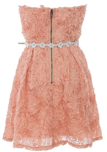 Strapless Dusty Pink Floral Applique White Belted Casual Summer Dress