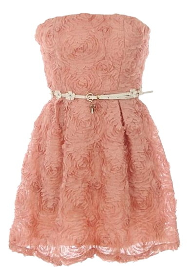 Strapless Vintage Pink Textured Applique Short Belted Bridesmaid Dress