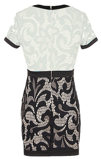 Black And White Lace Short Sleeve Fitted Bodycon Dress