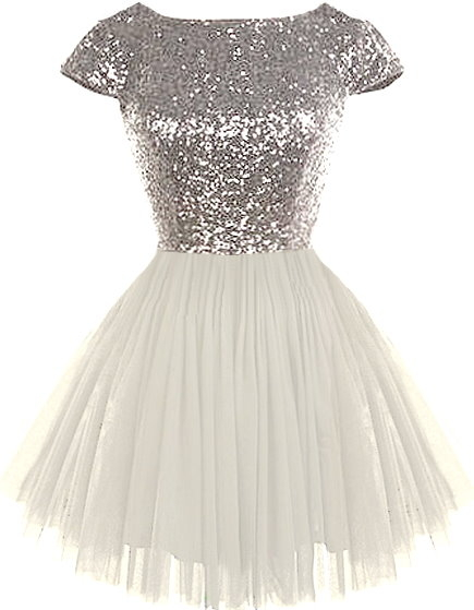 Silver Sequin Bodice Cap Sleeve White Mesh Ballerina Skirt Prom Dress