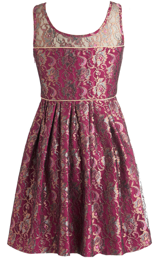 Dark Red Mesh Sweetheart Skater Dress