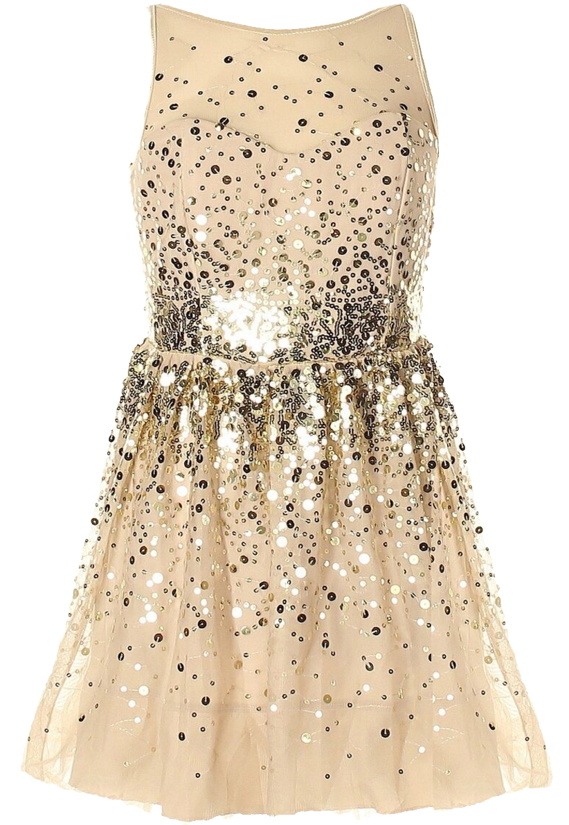 Nude Gold Sequin Mesh Skater Fit And Flare Party Dress